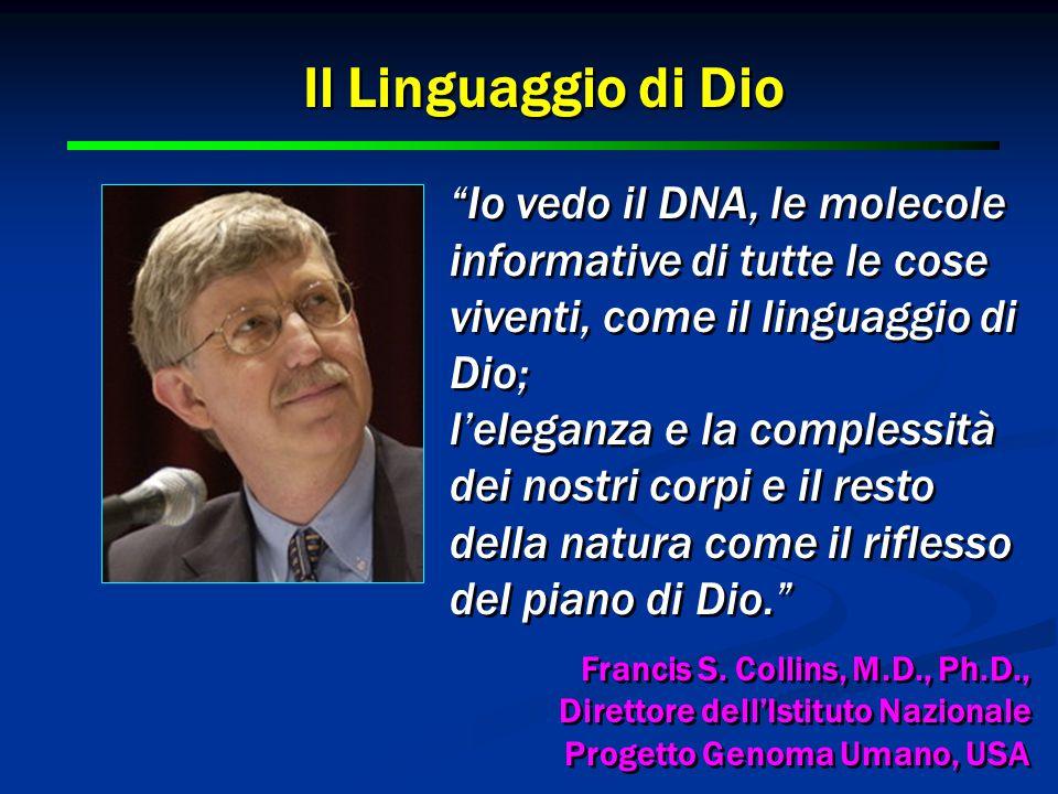 12 Io vedo il DNA, le molecole informative di tutte le cose viventi, come il linguaggio di Dio; l'eleganza e la complessità dei nostri corpi e il resto della natura come il riflesso del piano di Dio. Francis S.