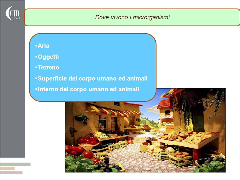 . Dove vivono i microrganismi  Aria  Oggetti  Terreno  Superficie del corpo umano ed animali  Interno del corpo umano ed animali