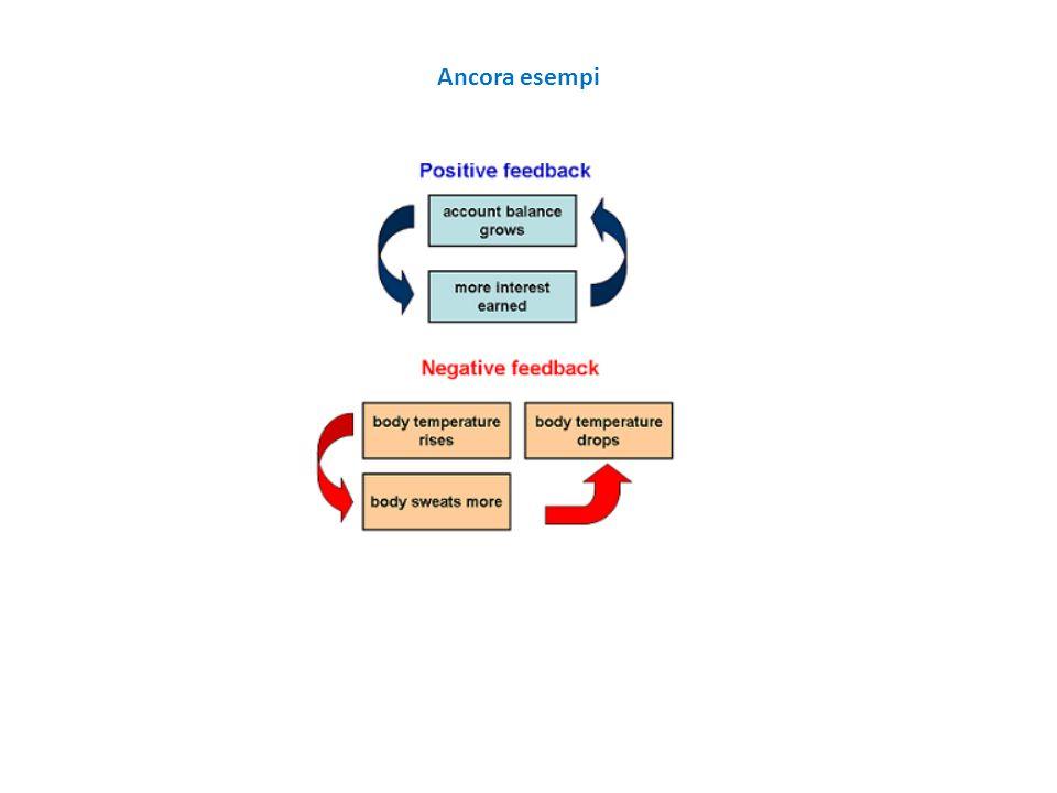 Esempio di controllo in anello chiuso (o catena chiusa o retroazione) L'azione è basata su un modello e su informazioni continue del sistema L'azione è determinata in base alle misure del comportamento effettivo del sistema ed al confronto di tale comportamento con quello desiderato
