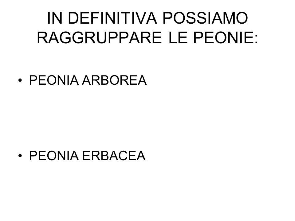 IN DEFINITIVA POSSIAMO RAGGRUPPARE LE PEONIE: PEONIA ARBOREA PEONIA ERBACEA