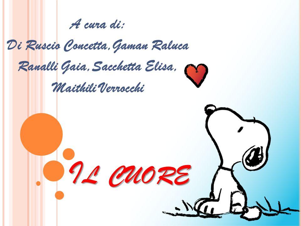 I L CUORE A cura di: Di Ruscio Concetta,Gaman Raluca Ranalli Gaia,Sacchetta Elisa, Maithili Verrocchi