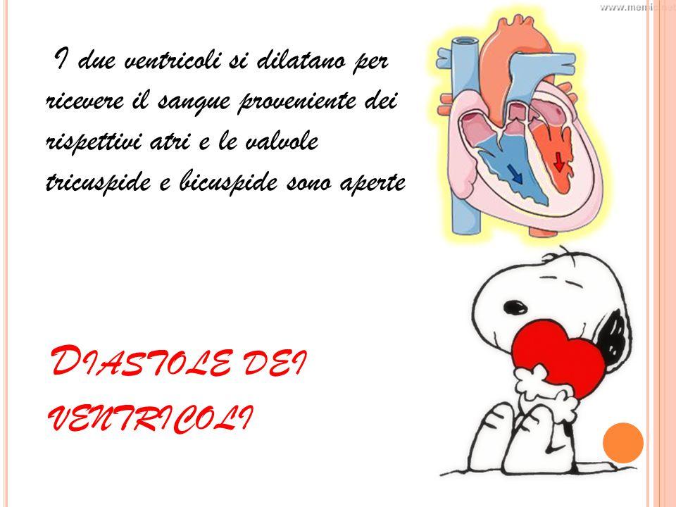 D IASTOLE DEI VENTRICOLI I due ventricoli si dilatano per ricevere il sangue proveniente dei rispettivi atri e le valvole tricuspide e bicuspide sono aperte