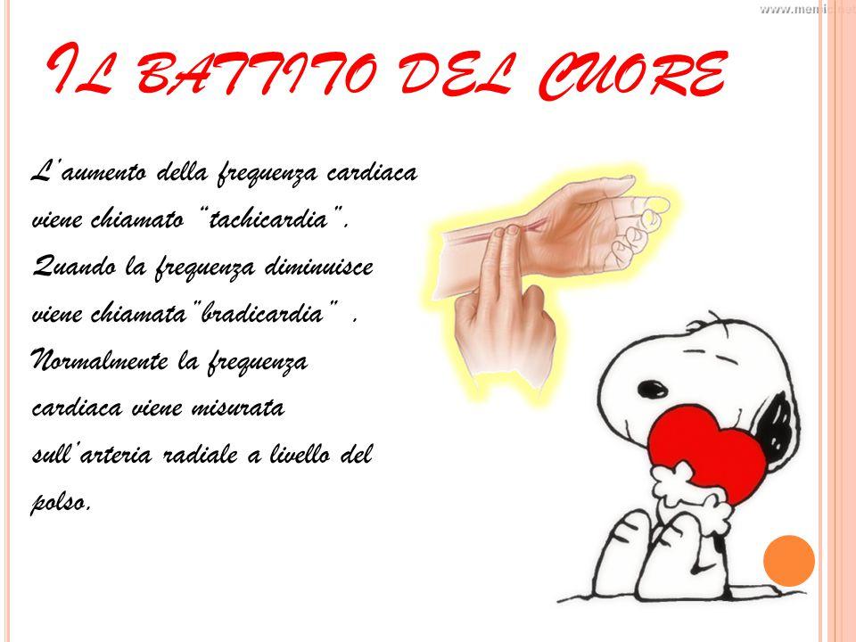 I L CICLO CARDIACO Di Elisa Sacchetta