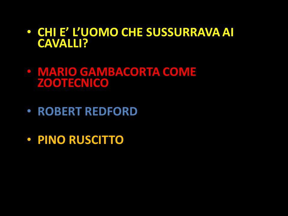 Organization in Pathways CHI E' L'UOMO CHE SUSSURRAVA AI CAVALLI? MARIO GAMBACORTA COME ZOOTECNICO ROBERT REDFORD PINO RUSCITTO