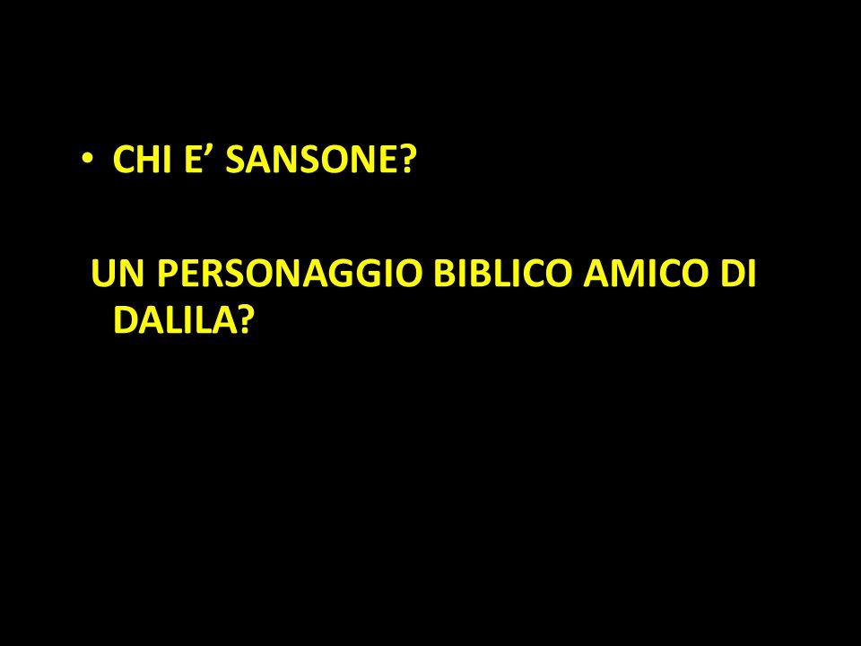 Organization in Pathways CHI E' SANSONE? UN PERSONAGGIO BIBLICO AMICO DI DALILA?