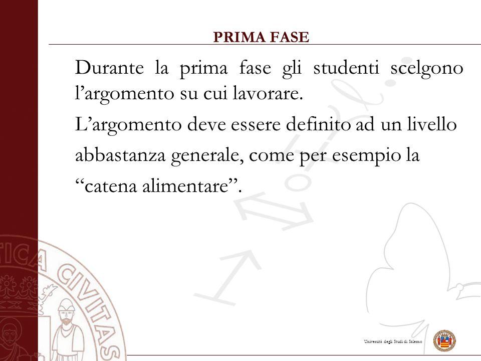Università degli Studi di Salerno PRIMA FASE Durante la prima fase gli studenti scelgono l'argomento su cui lavorare.