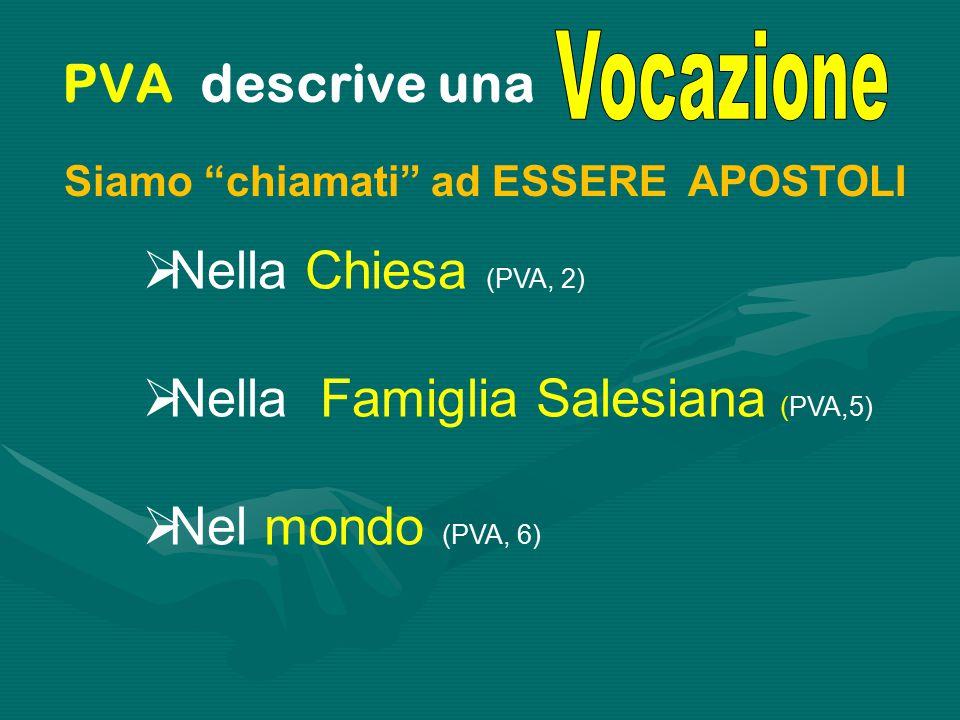  Nella Chiesa (PVA, 2)  Nella Famiglia Salesiana (PVA,5)  Nel mondo (PVA, 6) Siamo chiamati ad ESSERE APOSTOLI PVA descrive una