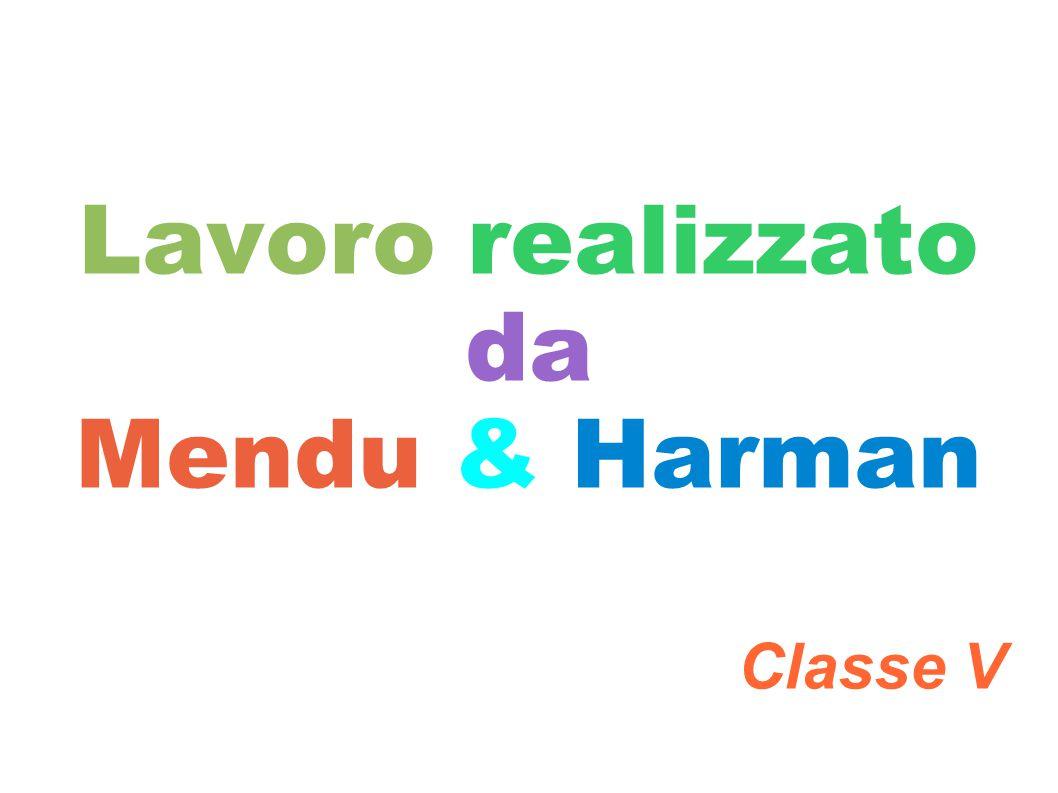 Lavoro realizzato da Mendu & Harman Classe V