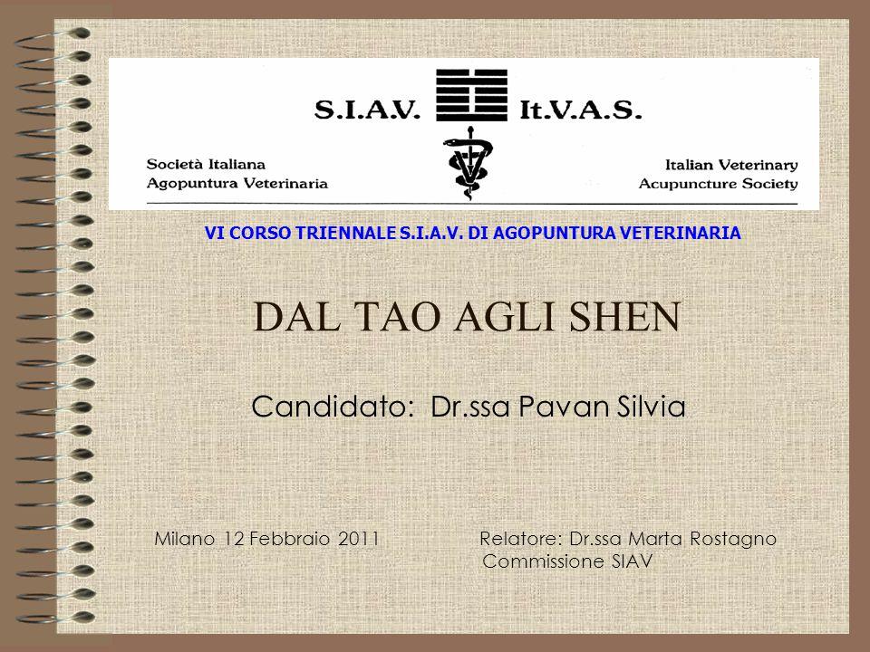 DAL TAO AGLI SHEN Candidato: Dr.ssa Pavan Silvia Milano 12 Febbraio 2011 Relatore: Dr.ssa Marta Rostagno Commissione SIAV VI CORSO TRIENNALE S.I.A.V.