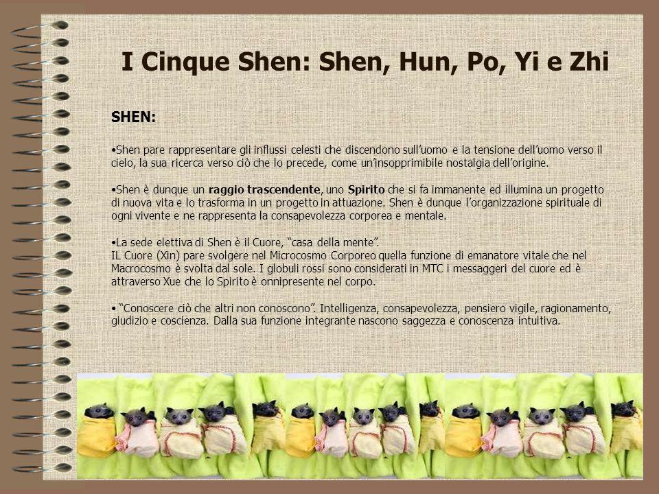 I Cinque Shen: Shen, Hun, Po, Yi e Zhi SHEN: Shen pare rappresentare gli influssi celesti che discendono sull'uomo e la tensione dell'uomo verso il ci