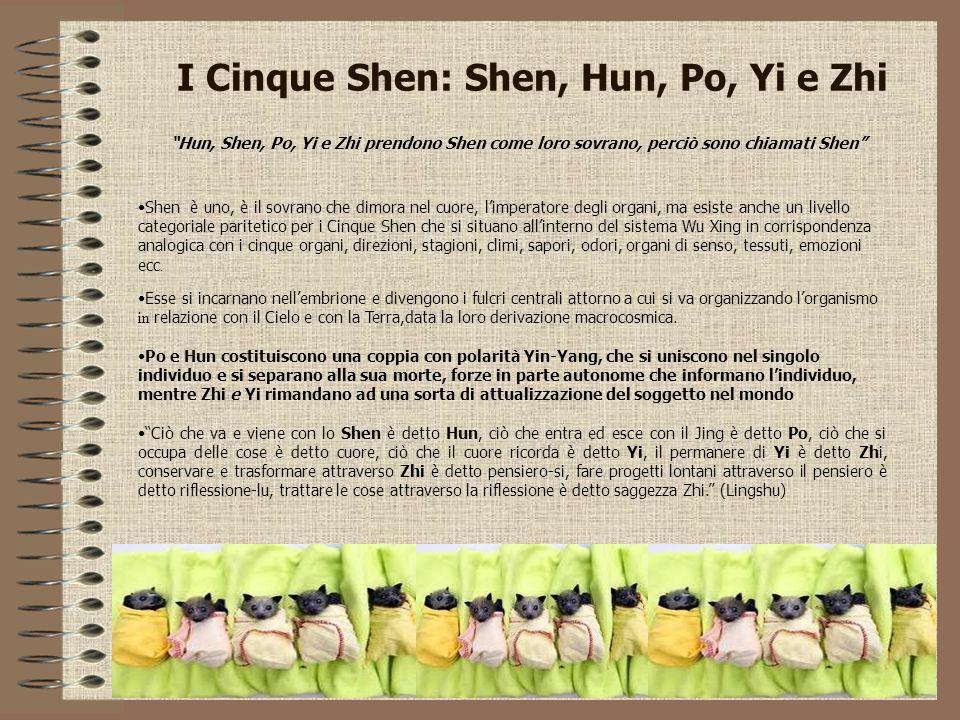 I Cinque Shen: Shen, Hun, Po, Yi e Zhi Shen è uno, è il sovrano che dimora nel cuore, l'imperatore degli organi, ma esiste anche un livello categorial