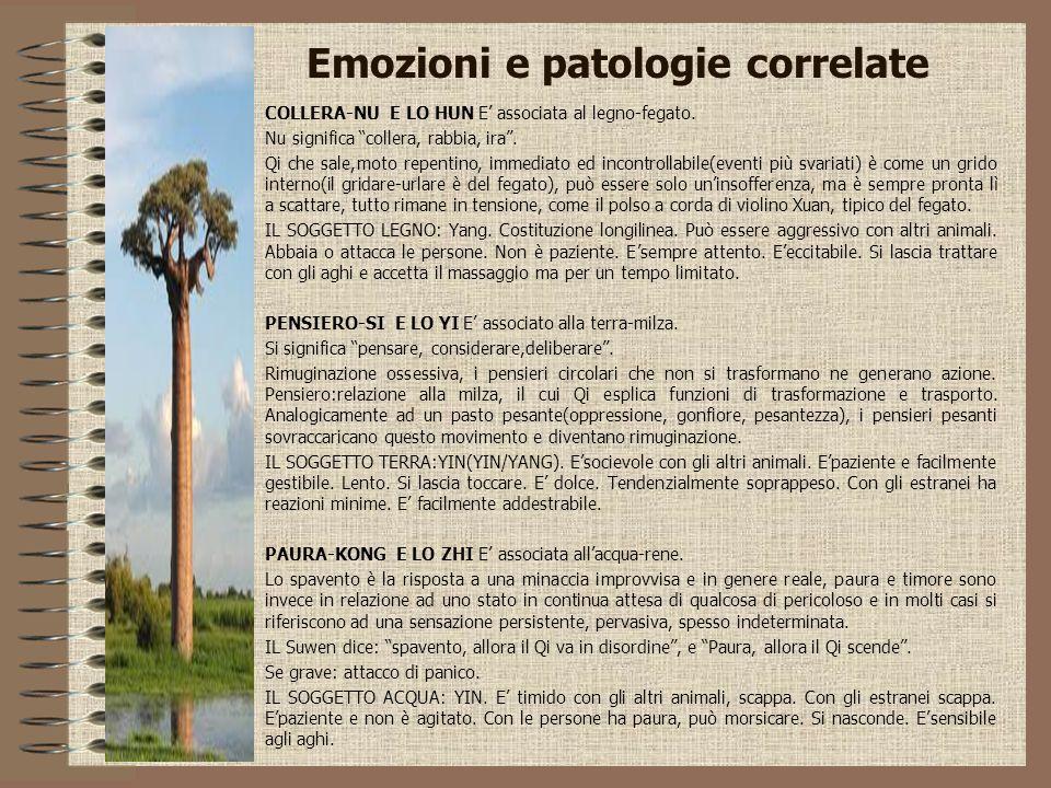 """Emozioni e patologie correlate COLLERA-NU E LO HUN E' associata al legno-fegato. Nu significa """"collera, rabbia, ira"""". Qi che sale,moto repentino, imme"""