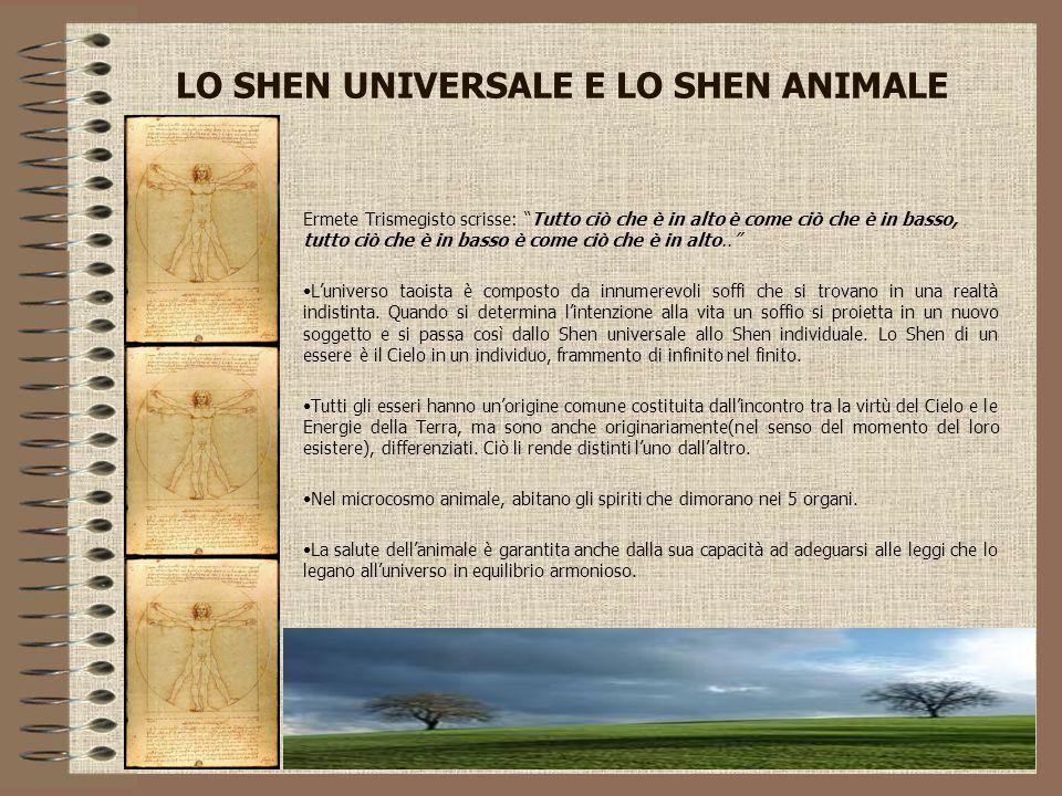 """LO SHEN UNIVERSALE E LO SHEN ANIMALE Ermete Trismegisto scrisse: """"Tutto ciò che è in alto è come ciò che è in basso, tutto ciò che è in basso è come c"""