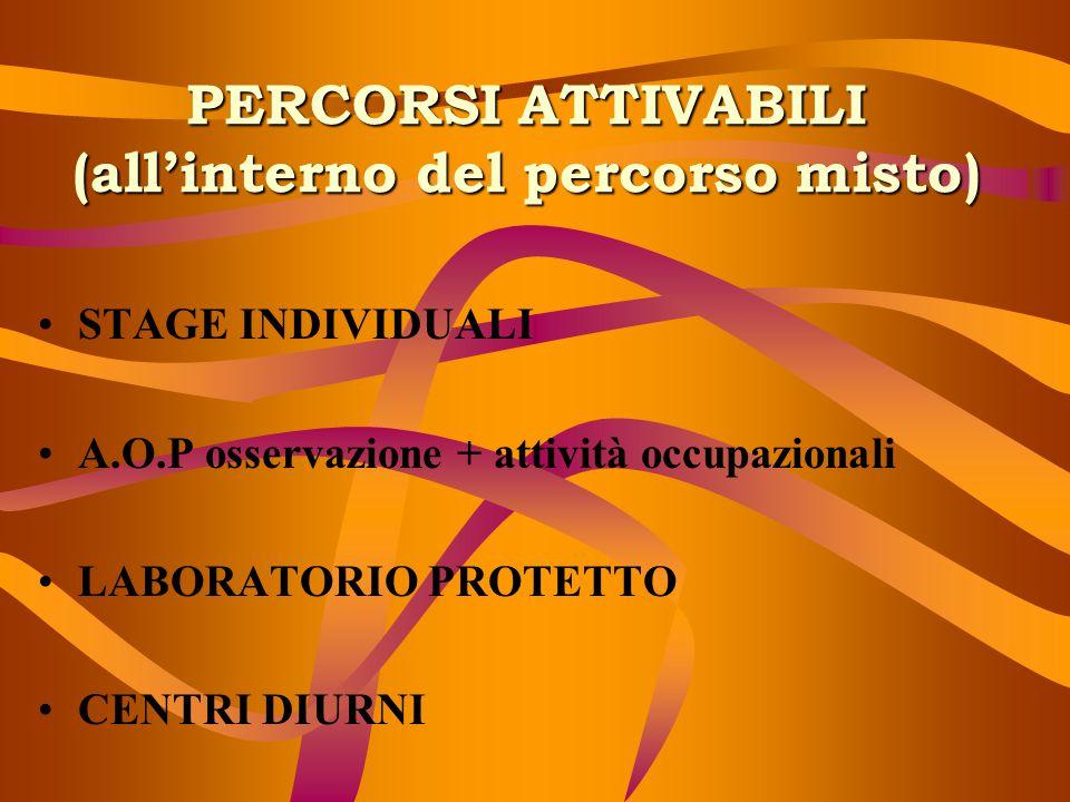 PERCORSI ATTIVABILI (all'interno del percorso misto) STAGE INDIVIDUALI A.O.P osservazione + attività occupazionali LABORATORIO PROTETTO CENTRI DIURNI
