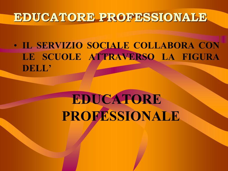 EDUCATORE PROFESSIONALE IL SERVIZIO SOCIALE COLLABORA CON LE SCUOLE ATTRAVERSO LA FIGURA DELL' EDUCATORE PROFESSIONALE