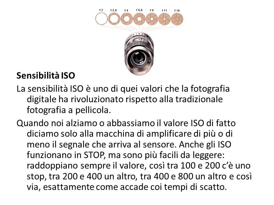 Sensibilità ISO La sensibilità ISO è uno di quei valori che la fotografia digitale ha rivoluzionato rispetto alla tradizionale fotografia a pellicola.