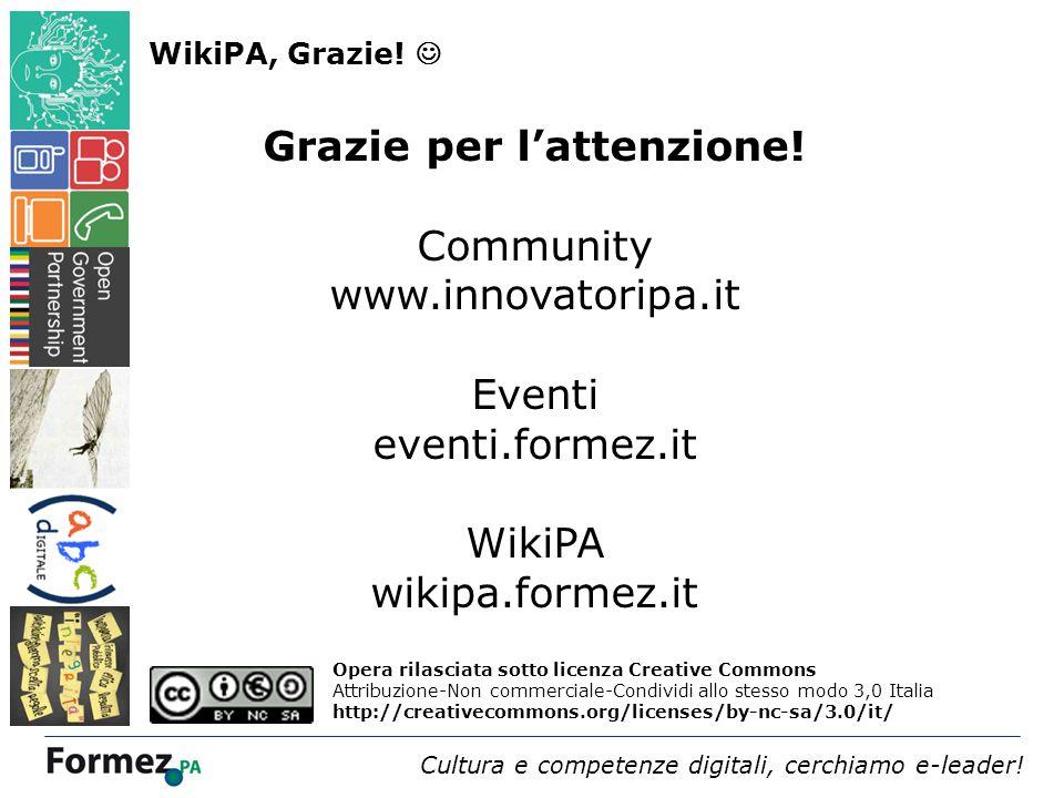Webinar 4 dicembre 2013 /100 Cultura e competenze digitali, cerchiamo e-leader.