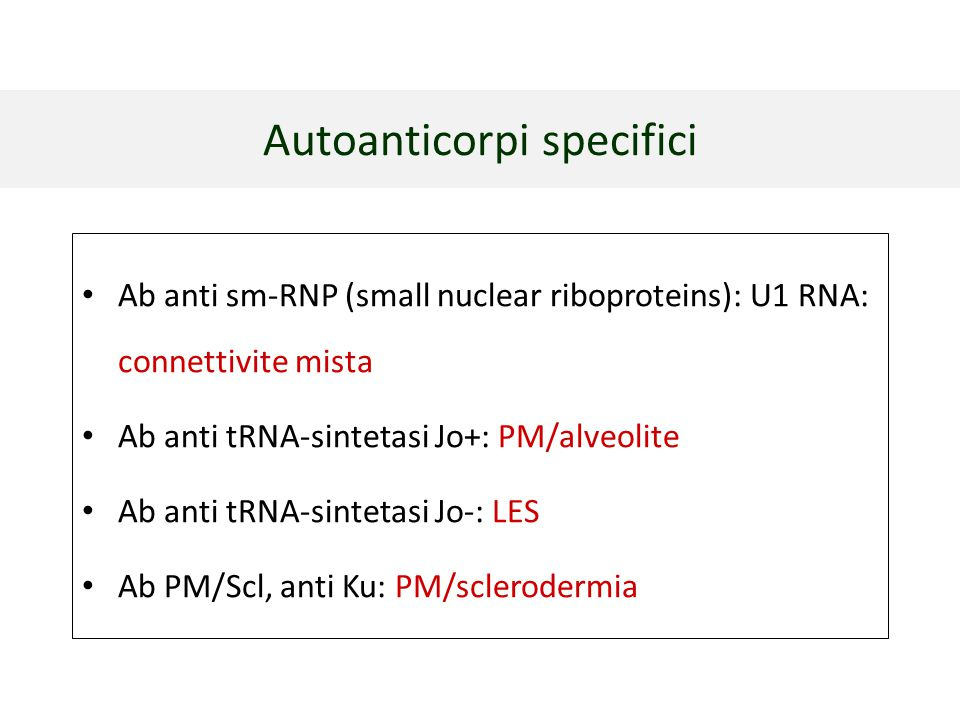 Ab anti sm-RNP (small nuclear riboproteins): U1 RNA: connettivite mista Ab anti tRNA-sintetasi Jo+: PM/alveolite Ab anti tRNA-sintetasi Jo-: LES Ab PM
