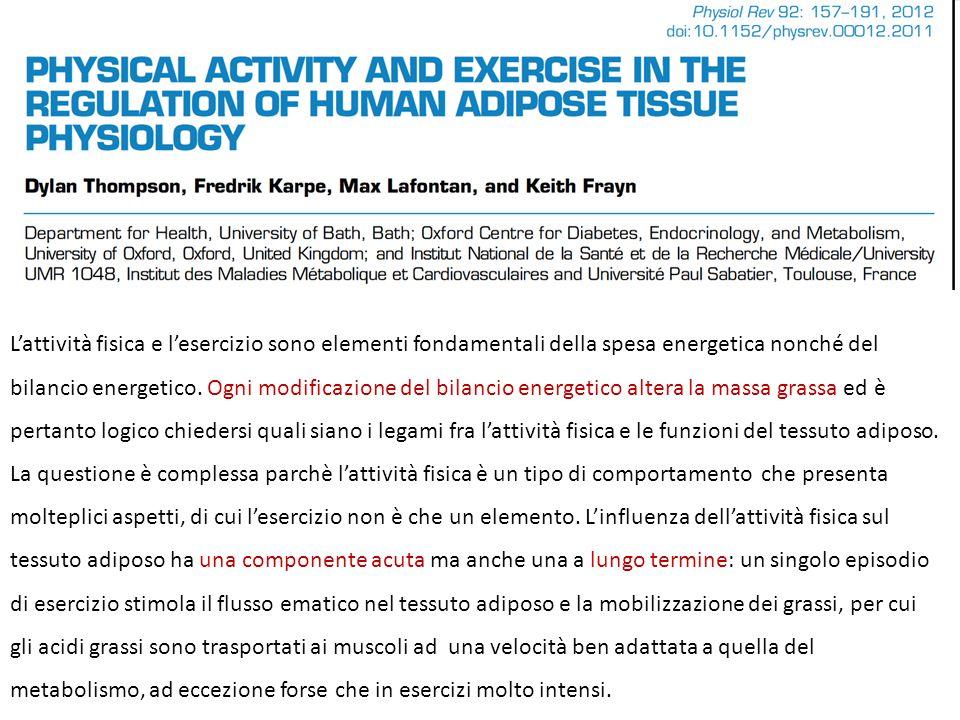 L'attività fisica e l'esercizio sono elementi fondamentali della spesa energetica nonché del bilancio energetico. Ogni modificazione del bilancio ener