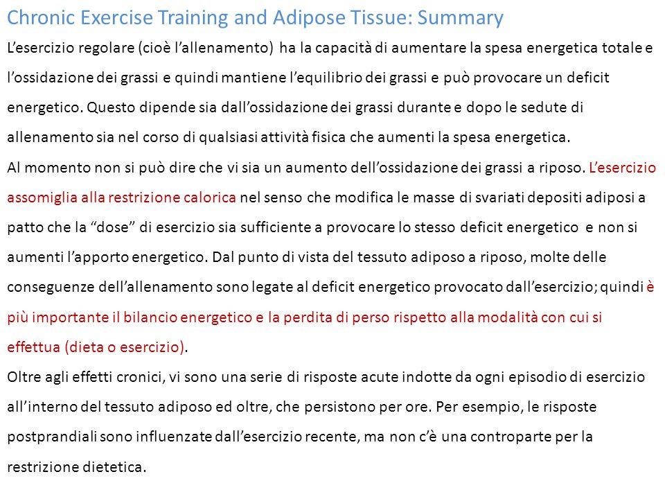 Chronic Exercise Training and Adipose Tissue: Summary L'esercizio regolare (cioè l'allenamento) ha la capacità di aumentare la spesa energetica totale