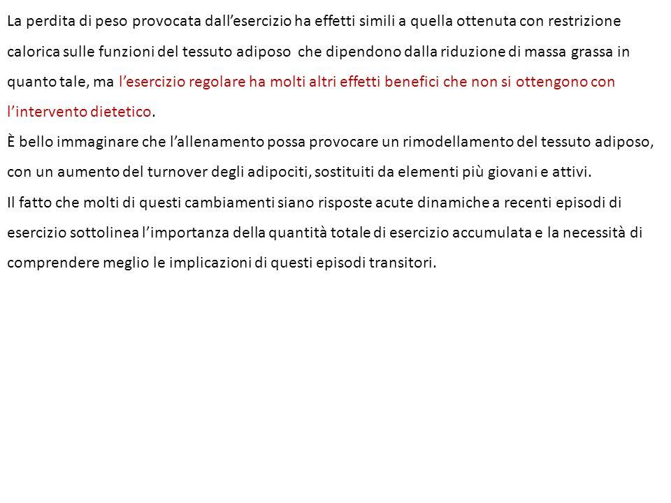 La perdita di peso provocata dall'esercizio ha effetti simili a quella ottenuta con restrizione calorica sulle funzioni del tessuto adiposo che dipend