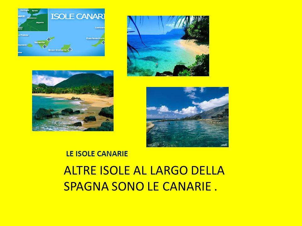 LE ISOLE CANARIE ALTRE ISOLE AL LARGO DELLA SPAGNA SONO LE CANARIE.