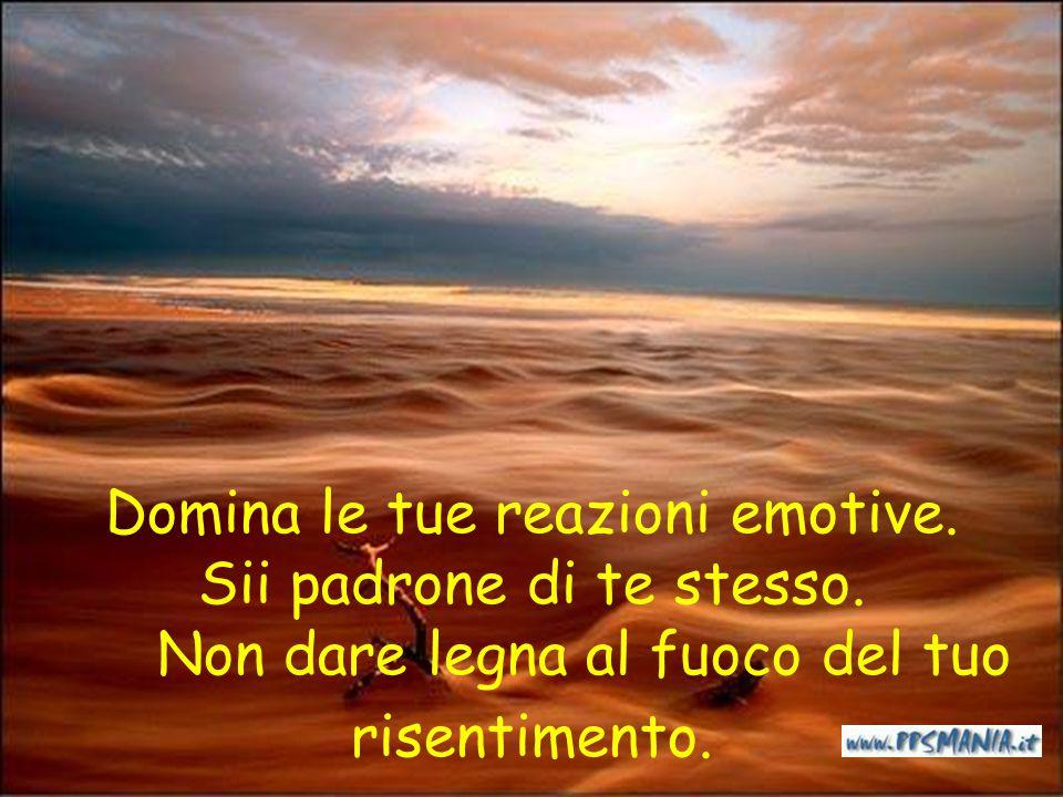 Perciò, caro amico, non essere triste per il cattivo atteggiamento di alcune persone; non perdere la tua serenità... ricordando che…. la rabbia fa mal
