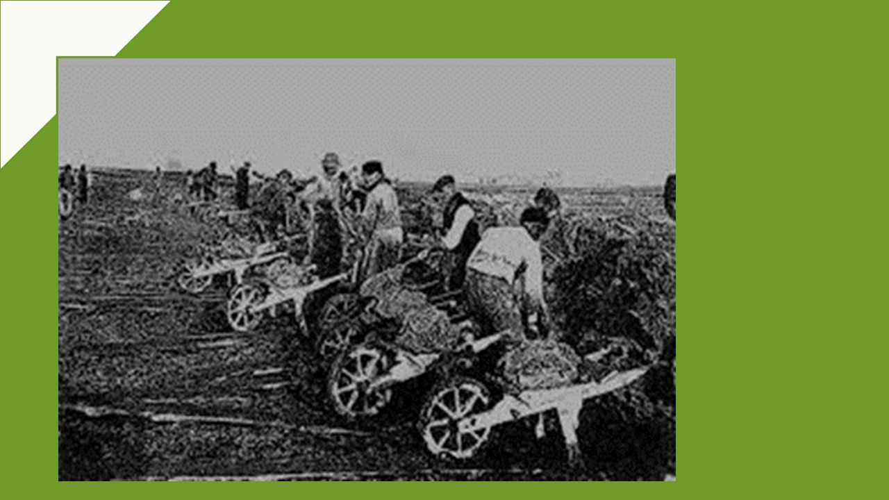 GLI SCARIOLANTI WERE «WHEELBARROW-MEN» WHO WORKED IN OUR REGION IN THE 16TH AND 20TH CENTURY TO DRAIN THE TERRITORIES AROUND THE RIVERS