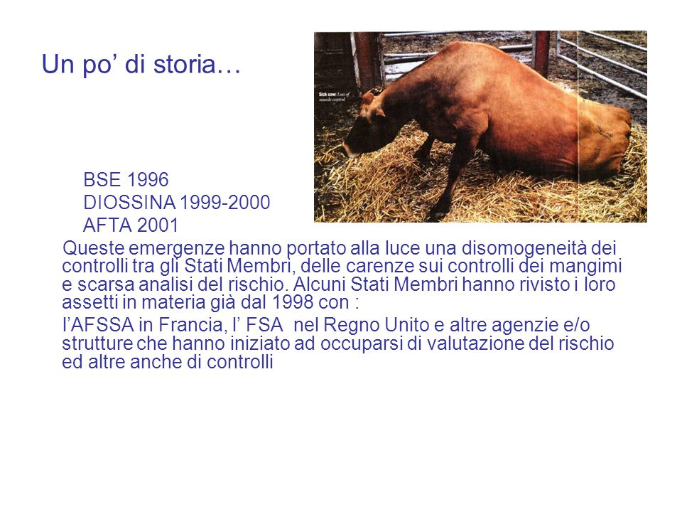 Un po' di storia… BSE 1996 DIOSSINA 1999-2000 AFTA 2001 Queste emergenze hanno portato alla luce una disomogeneità dei controlli tra gli Stati Membri, delle carenze sui controlli dei mangimi e scarsa analisi del rischio.