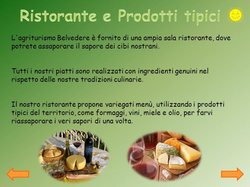 L agriturismo Belvedere è fornito di una ampia sala ristorante, dove potrete assaporare il sapore dei cibi nostrani.