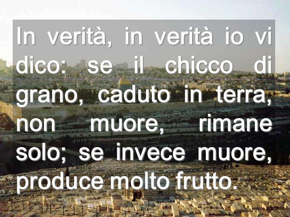 In verità, in verità io vi dico: se il chicco di grano, caduto in terra, non muore, rimane solo; se invece muore, produce molto frutto.