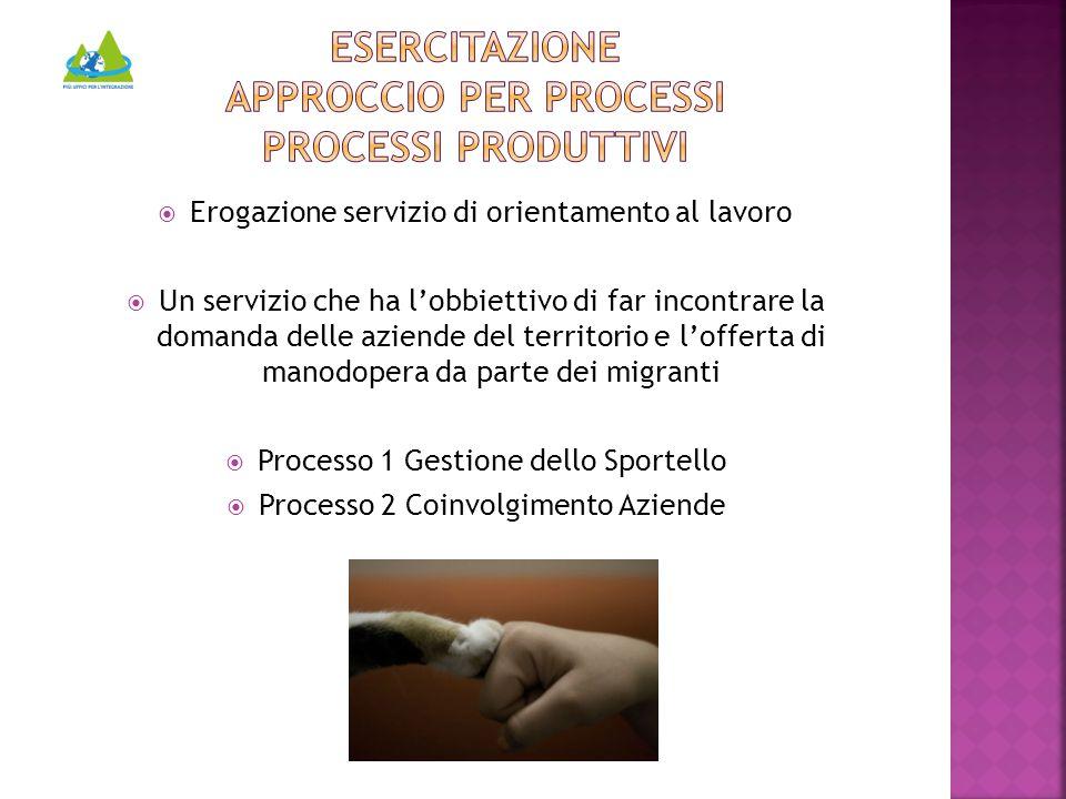  Erogazione servizio di orientamento al lavoro  Un servizio che ha l'obbiettivo di far incontrare la domanda delle aziende del territorio e l'offerta di manodopera da parte dei migranti  Processo 1 Gestione dello Sportello  Processo 2 Coinvolgimento Aziende