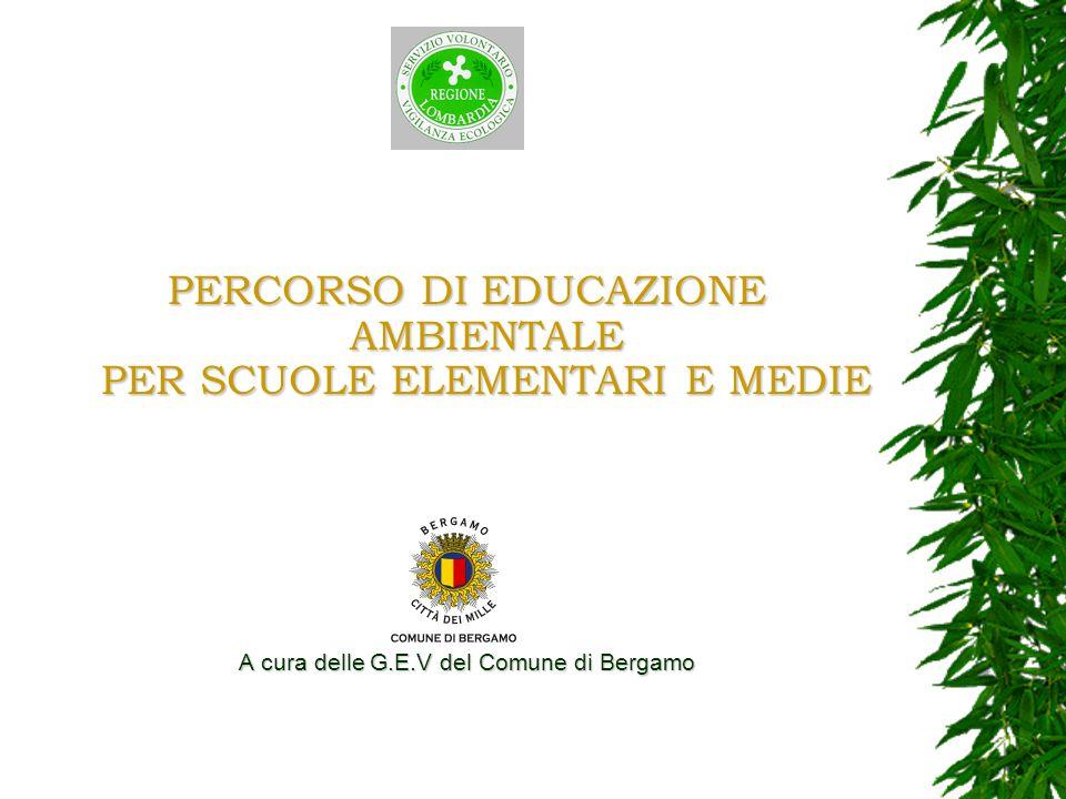 PERCORSO DI EDUCAZIONE AMBIENTALE PER SCUOLE ELEMENTARI E MEDIE A cura delle G.E.V del Comune di Bergamo