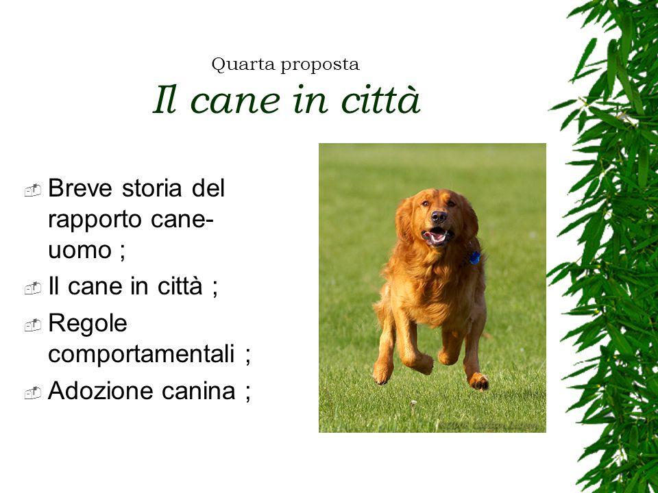 Quarta proposta Il cane in città  Breve storia del rapporto cane- uomo ;  Il cane in città ;  Regole comportamentali ;  Adozione canina ;