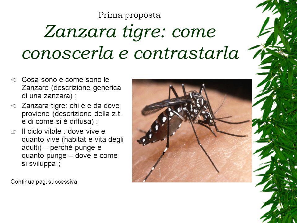 Prima proposta Zanzara tigre: come conoscerla e contrastarla  Cosa sono e come sono le Zanzare (descrizione generica di una zanzara) ;  Zanzara tigre: chi è e da dove proviene (descrizione della z.t.