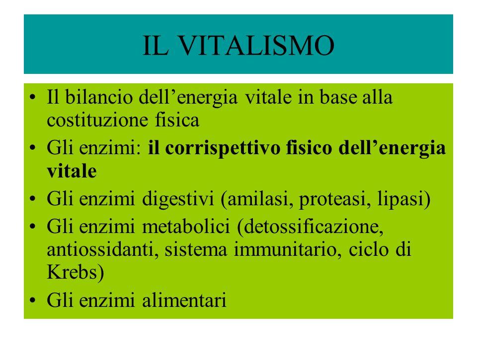 Il bilancio dell'energia vitale in base alla costituzione fisica Gli enzimi: il corrispettivo fisico dell'energia vitale Gli enzimi digestivi (amilasi