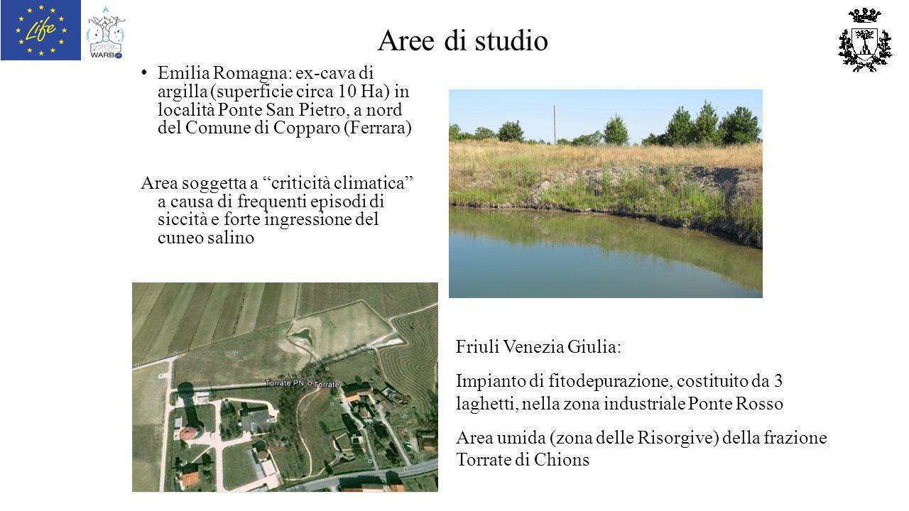 Aree di studio Emilia Romagna: ex-cava di argilla (superficie circa 10 Ha) in località Ponte San Pietro, a nord del Comune di Copparo (Ferrara) Area s