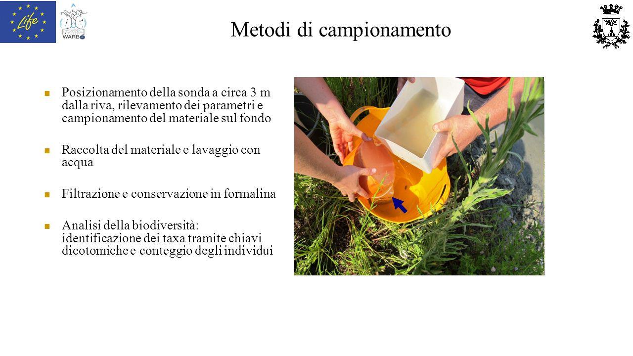 Metodi di campionamento Posizionamento della sonda a circa 3 m dalla riva, rilevamento dei parametri e campionamento del materiale sul fondo Raccolta