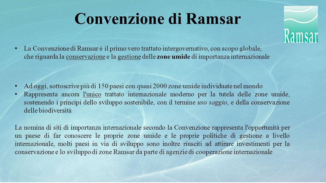 Convenzione di Ramsar La Convenzione di Ramsar è il primo vero trattato intergovernativo, con scopo globale, che riguarda la conservazione e la gestio