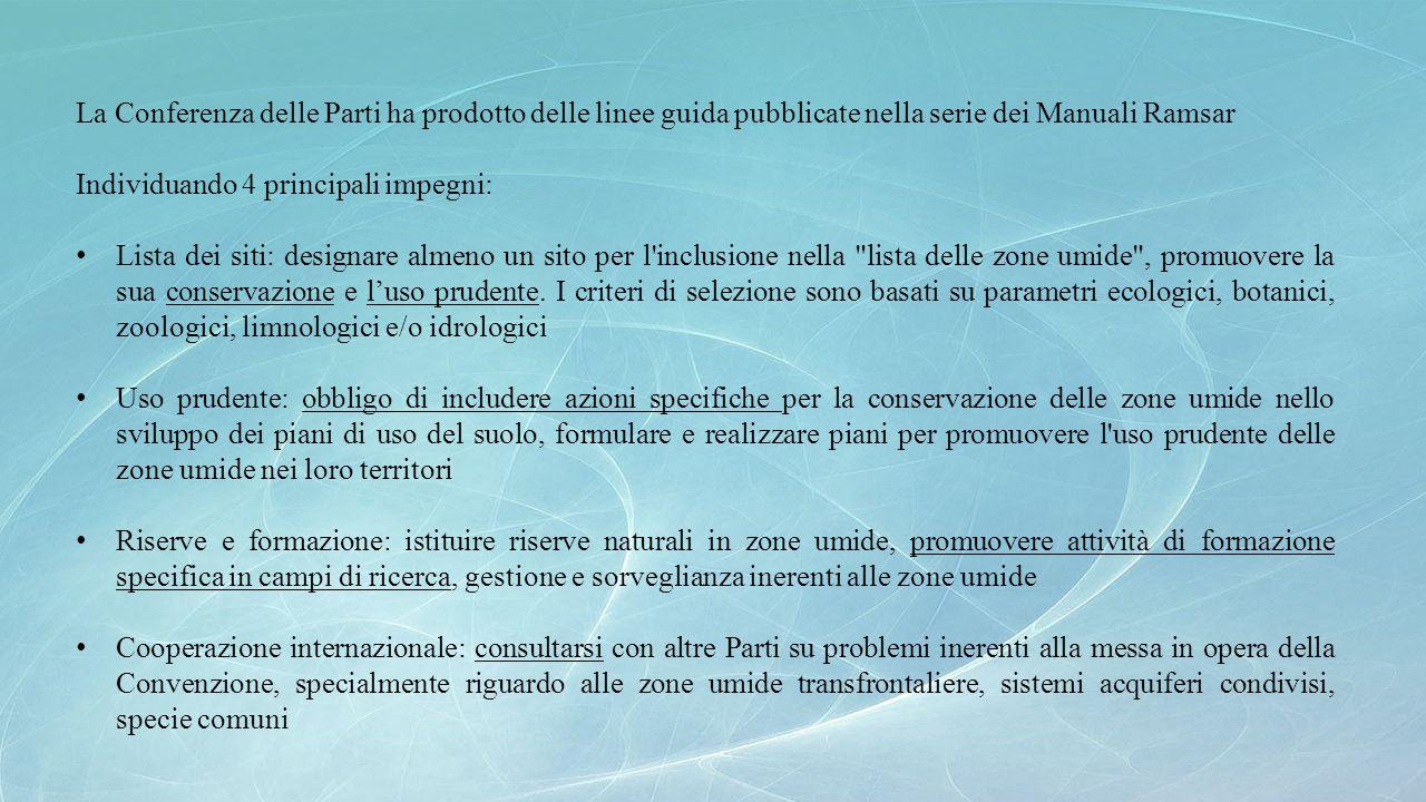 La Conferenza delle Parti ha prodotto delle linee guida pubblicate nella serie dei Manuali Ramsar Individuando 4 principali impegni: Lista dei siti: d