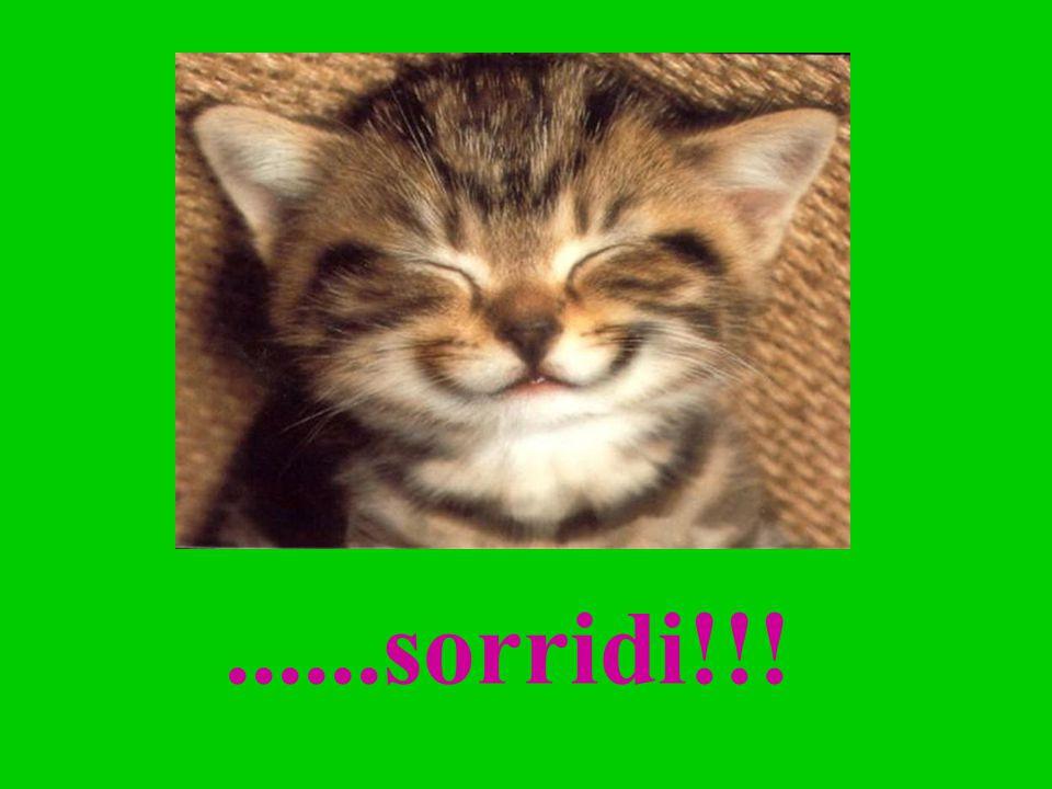 ......sorridi!!!