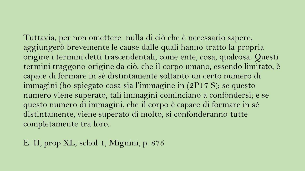 Per realtà e perfezione intendo la stessa cosa. E. II, def. VI, Ivi, p. 836.
