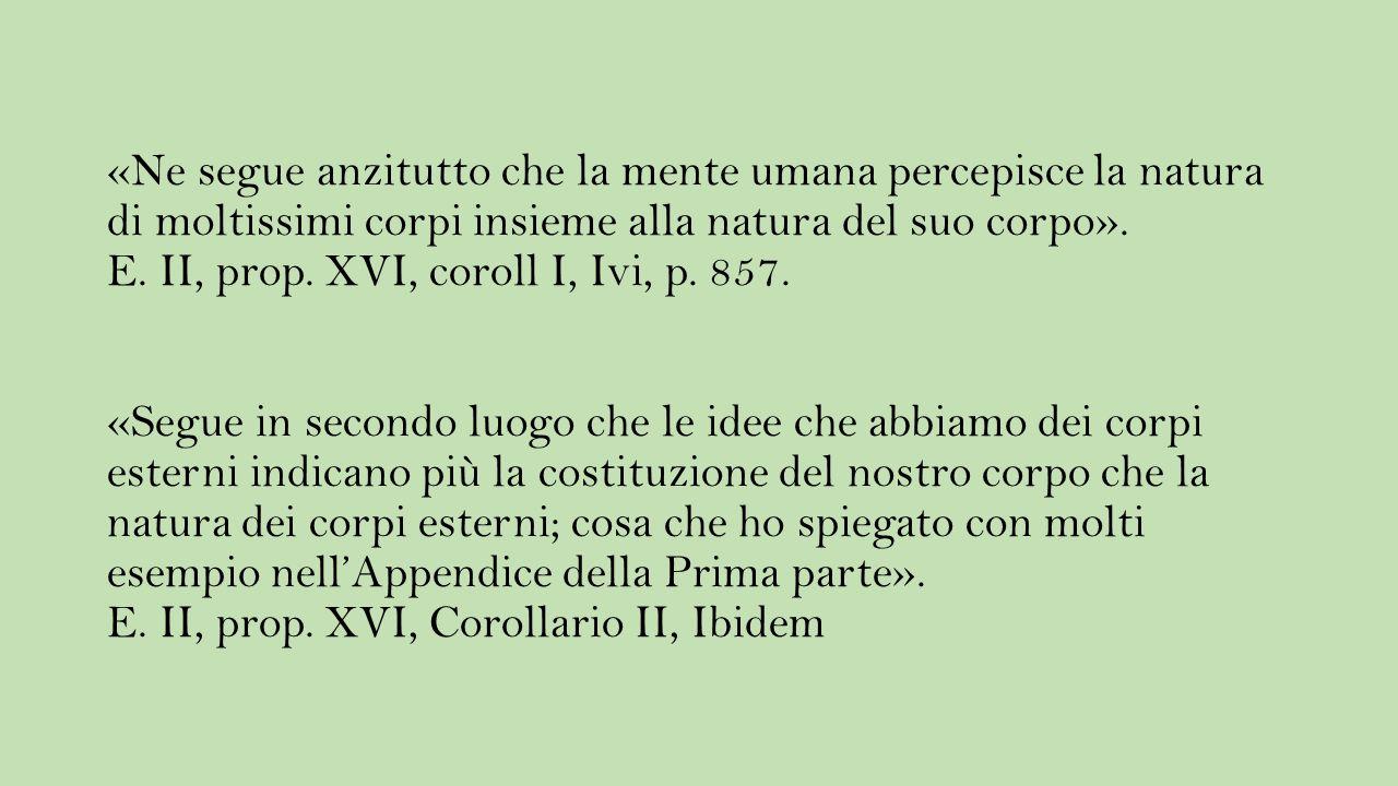 «Ne segue anzitutto che la mente umana percepisce la natura di moltissimi corpi insieme alla natura del suo corpo». E. II, prop. XVI, coroll I, Ivi, p