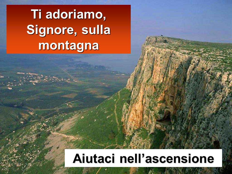 Mt 28,16-20 In quel tempo, gli undici discepoli andarono in Galilea, sul monte che Gesù aveva loro indicato.