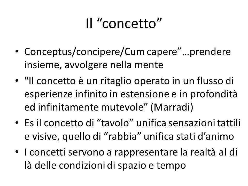 """Il """"concetto"""" Conceptus/concipere/Cum capere""""…prendere insieme, avvolgere nella mente"""