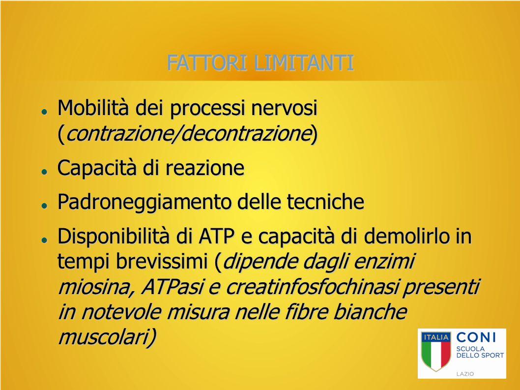 FATTORI LIMITANTI Mobilità dei processi nervosi (contrazione/decontrazione) Mobilità dei processi nervosi (contrazione/decontrazione) Capacità di reaz