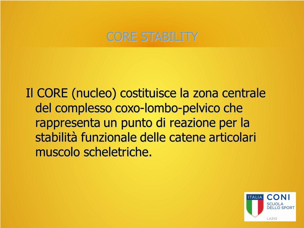 CORE STABILITY Il CORE (nucleo) costituisce la zona centrale del complesso coxo-lombo-pelvico che rappresenta un punto di reazione per la stabilità fu