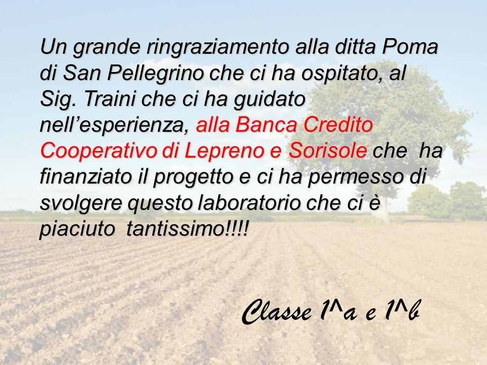 Un grande ringraziamento alla ditta Poma di San Pellegrino che ci ha ospitato, al Sig. Traini che ci ha guidato nell'esperienza, alla Banca Credito Co