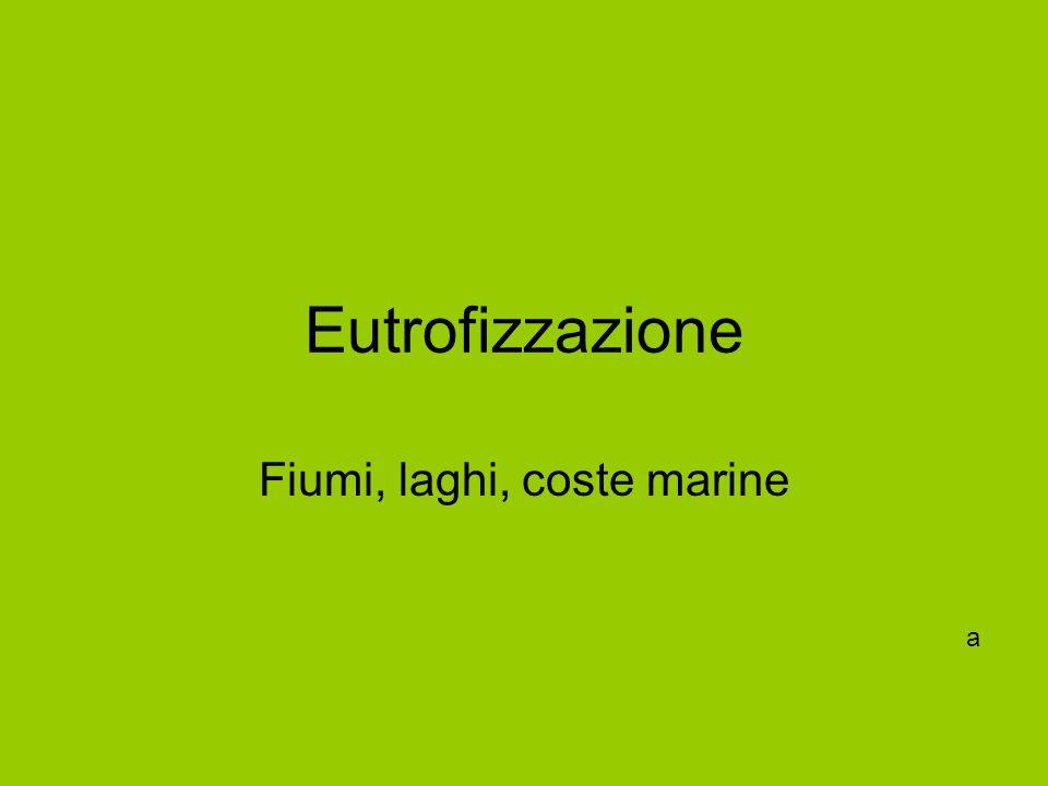 Eutrofizzazione Fiumi, laghi, coste marine a