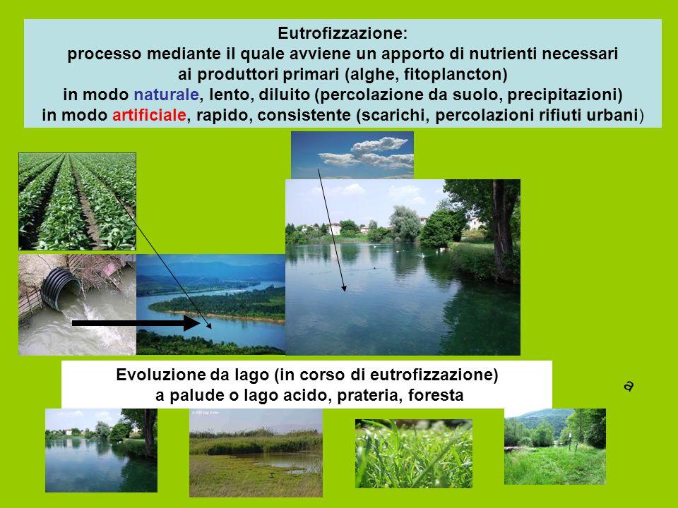 Eutrofizzazione: processo mediante il quale avviene un apporto di nutrienti necessari ai produttori primari (alghe, fitoplancton) in modo naturale, le